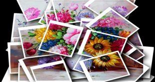 ดอกไม้หลากสีในสังคมมุสลิม : พื้นที่ของเหตุผลในศาสนา